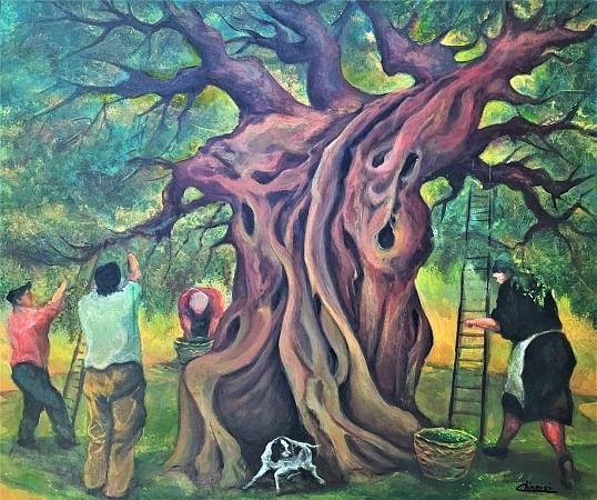 The Old Olive Tree - Harvest 1942'